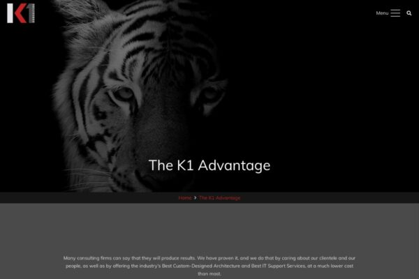 K1 Consulting_About